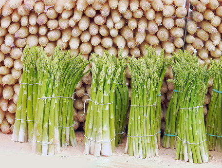 asparagus-1401025_1920