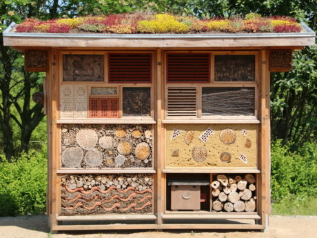 insect-house-598354_1920